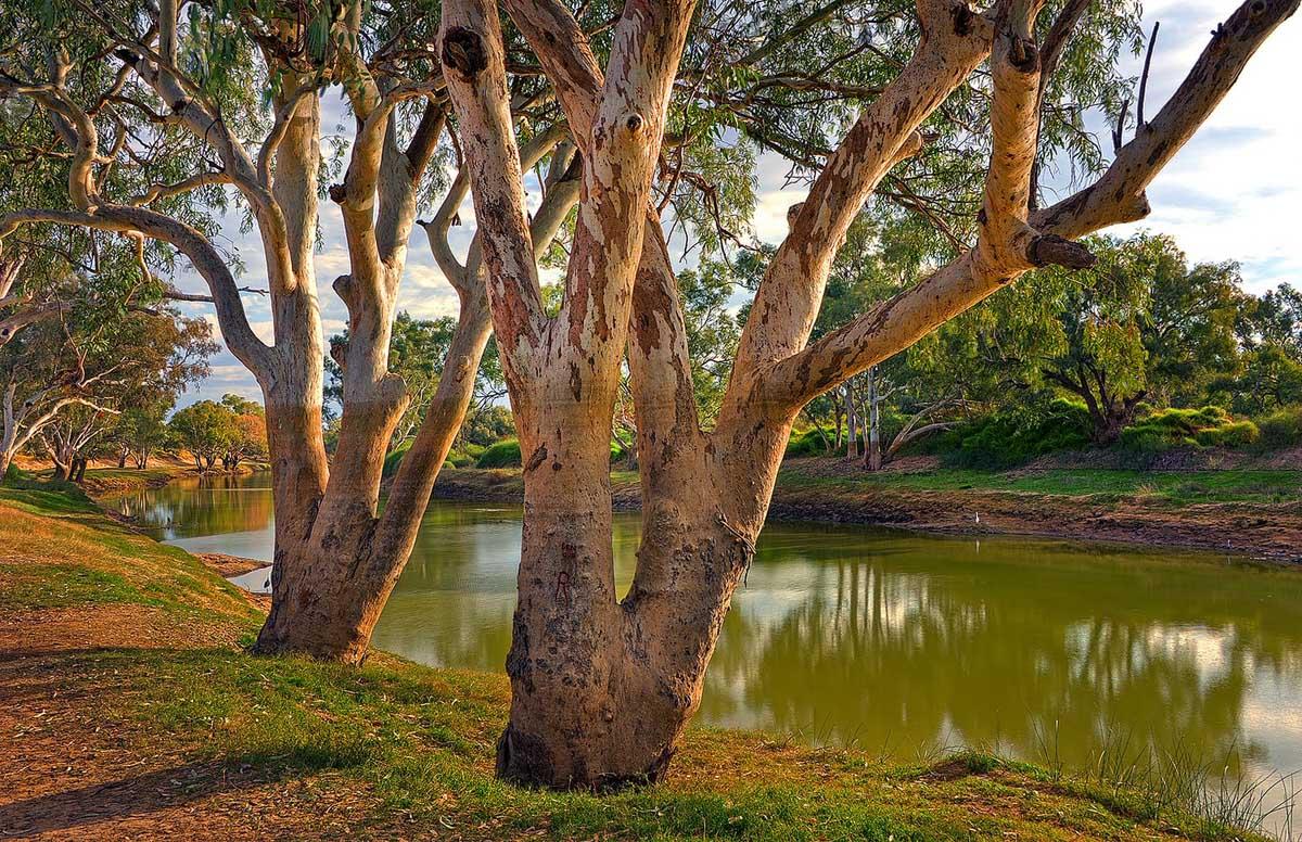 Cooper Creek, Queensland, Australia
