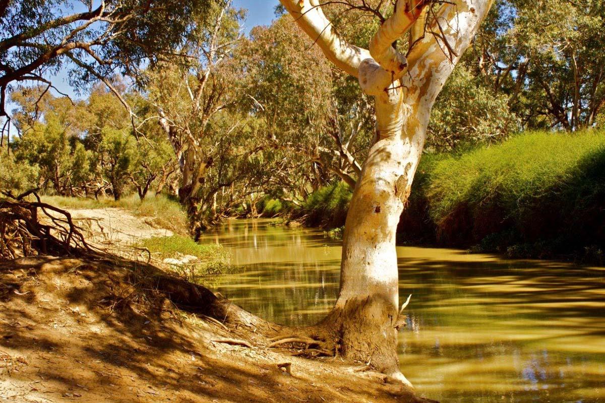 Австралии река купер крик