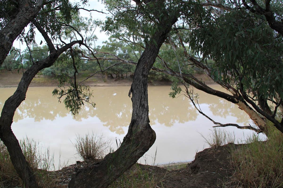 Cooper Creek river in Queensland, Australia
