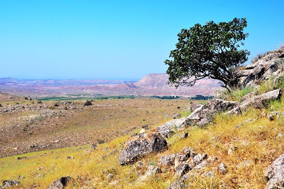 Ферганская долина, Узбекистан, Центральная Азия