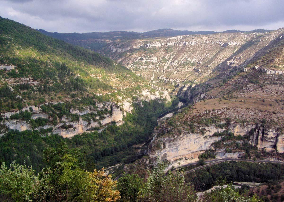 Gorges Du Tarn, Cevennes National Park, France