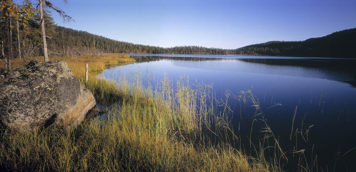 Национальный парк Bjornlandet в Швеции