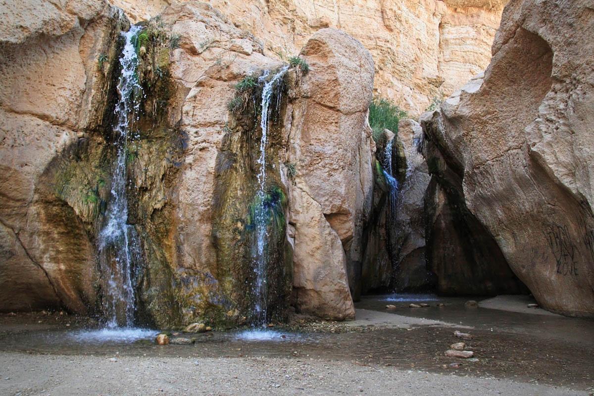 Oasis de Tamerza, Tunisie