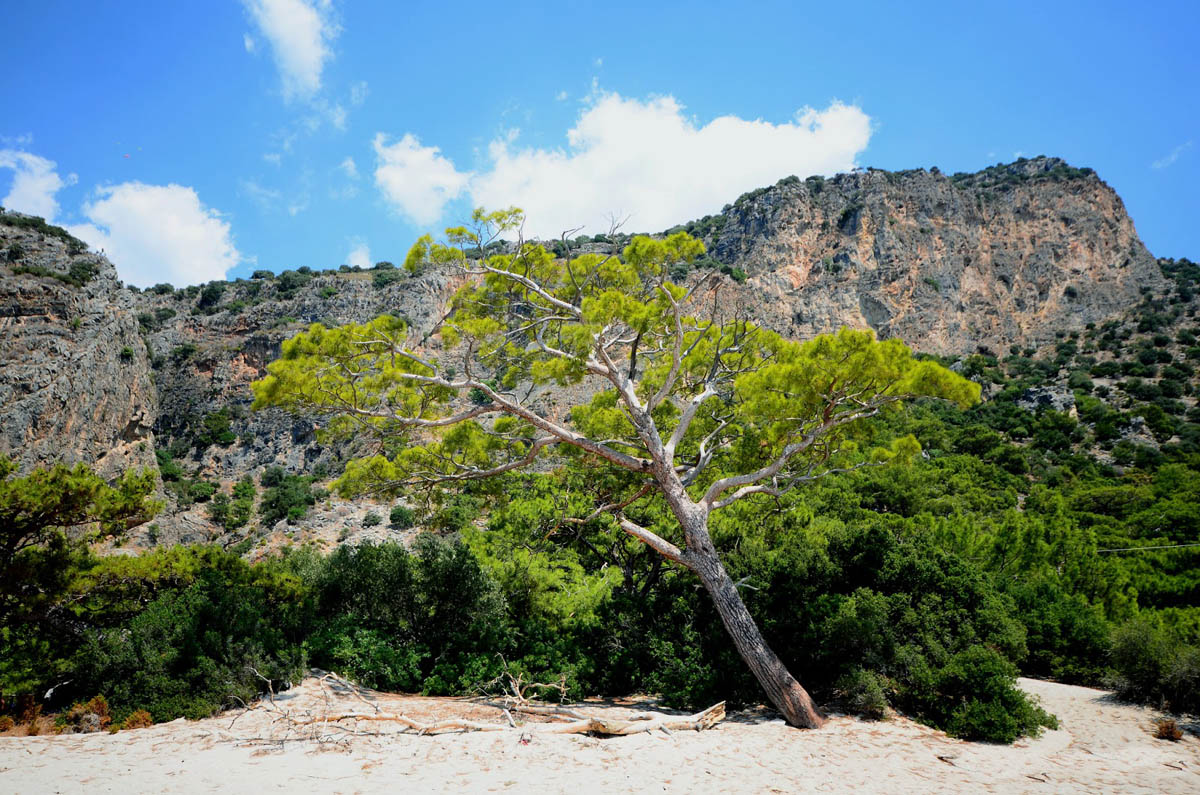 Oludeniz-Kidrak Nature Park, Turkey