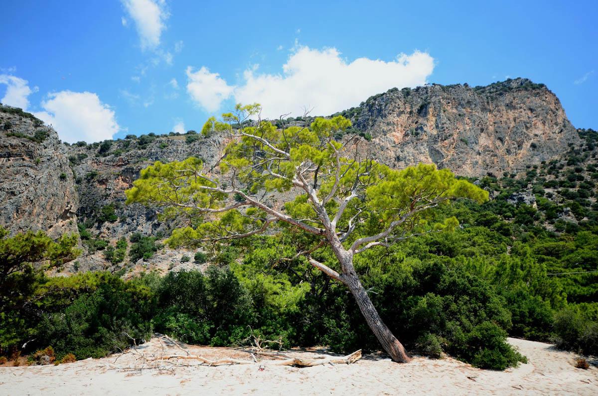 Oludeniz-Kidrak Nature Park, Turkey
