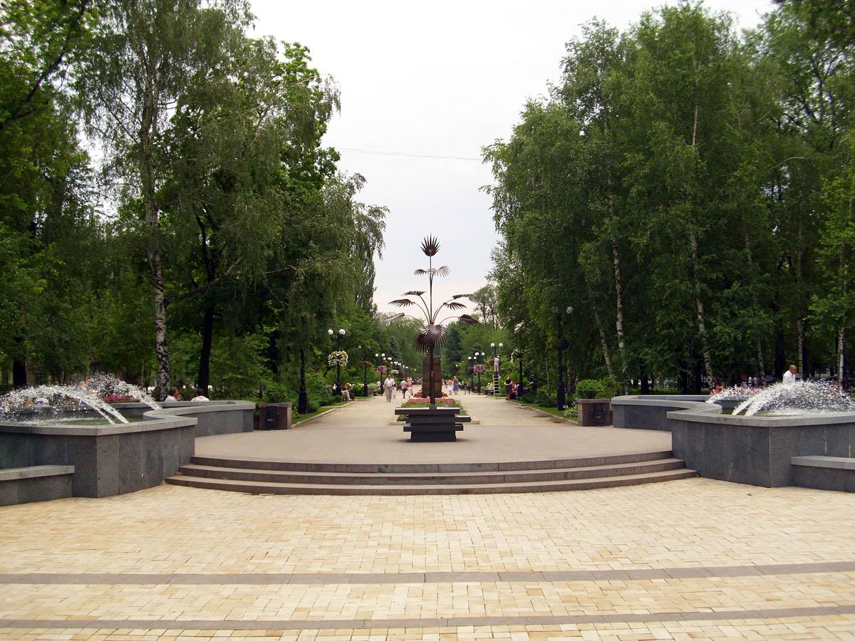 Пальма Мерцалова, бульвар Пушкина, Донецк