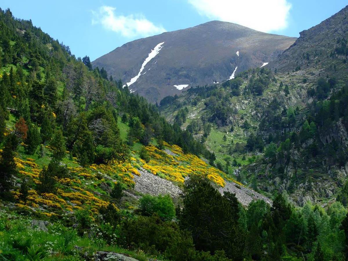 Sorteni Valley