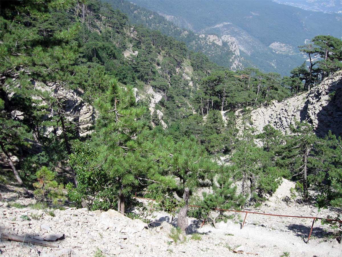 Таракташская тропа, Ялта
