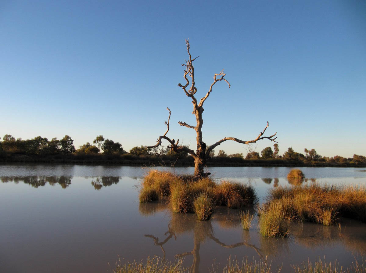 The Diamantina River at Birdsville, Queensland