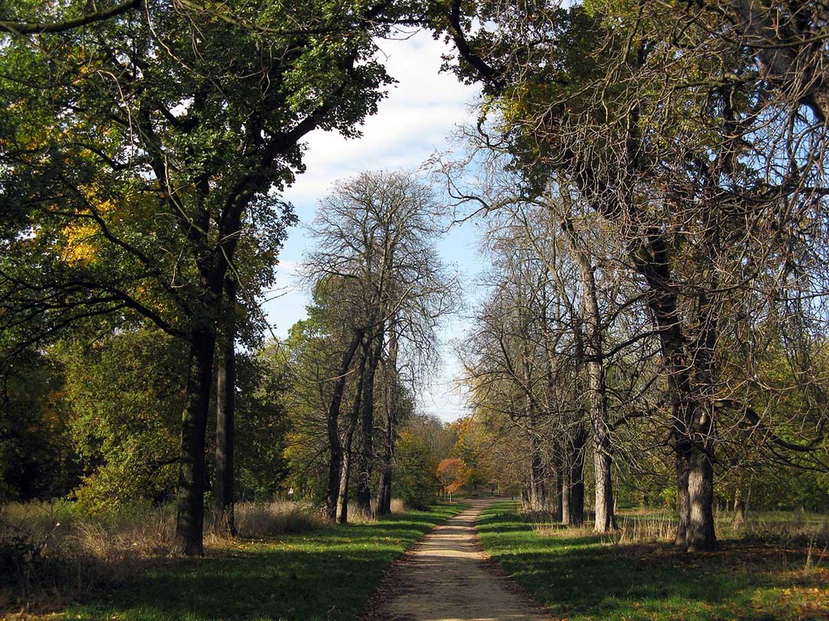 Венсенский лес, Париж, Франция