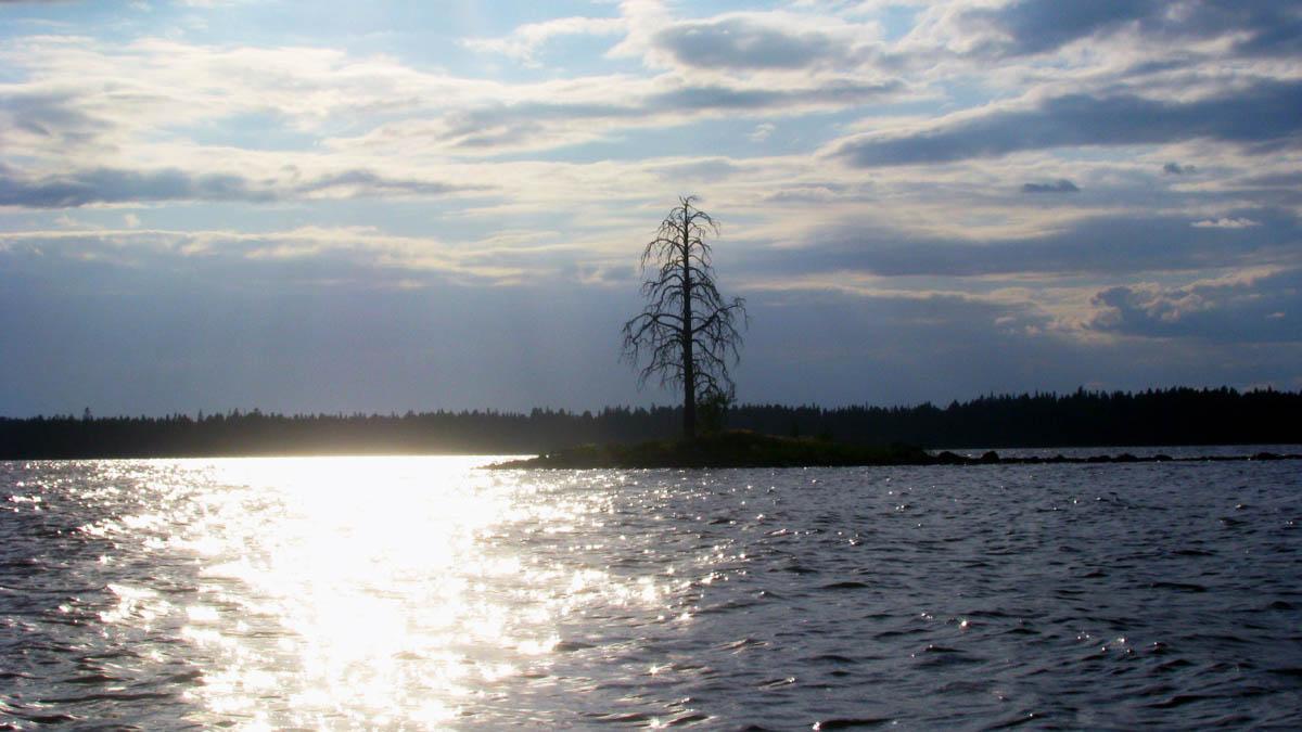 Водлозерский Нацпарк, Карелия, Россия