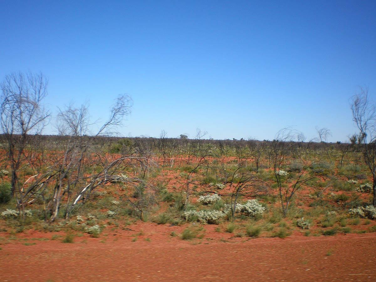 Западная пустыня Австралии