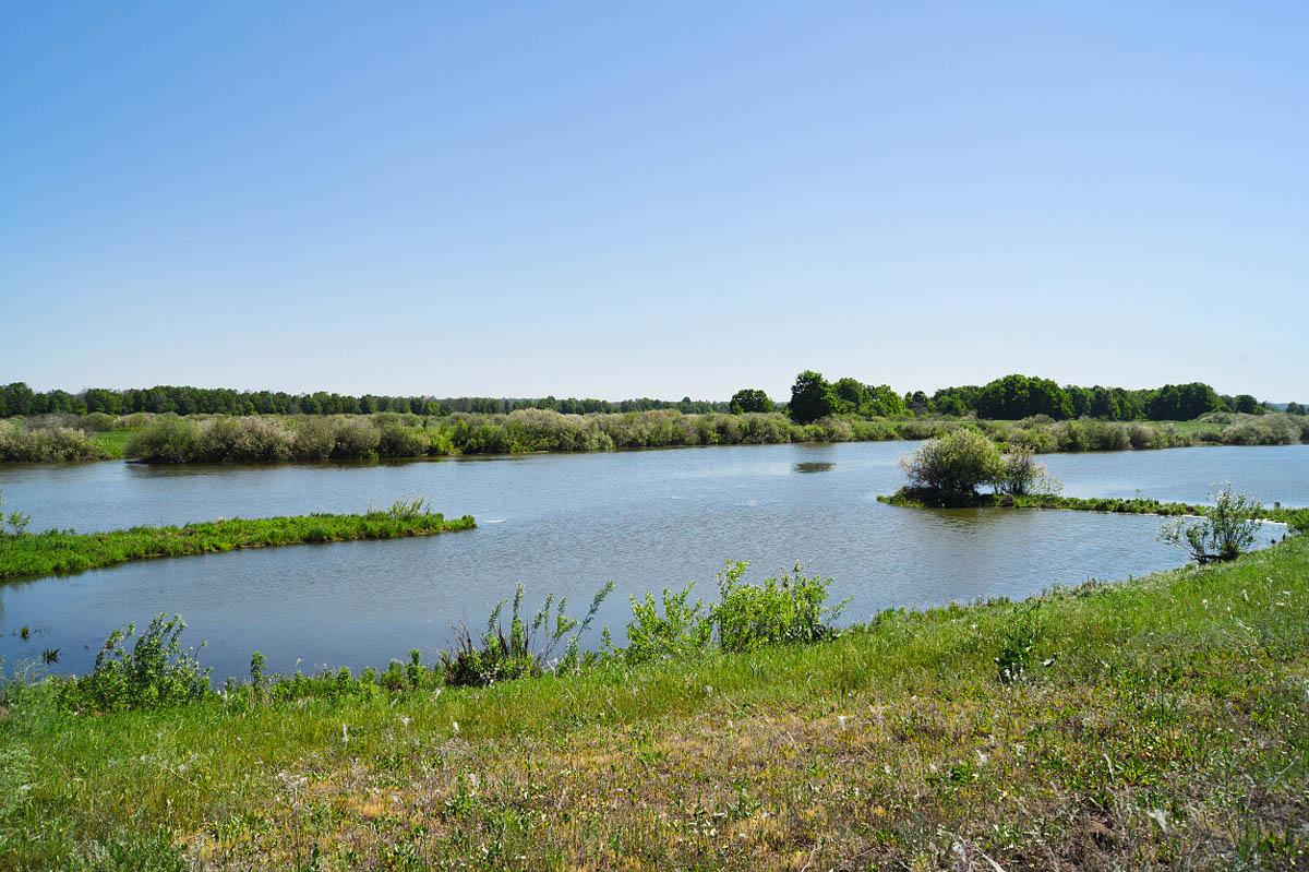 озеро Веловощ, Муромский заказник
