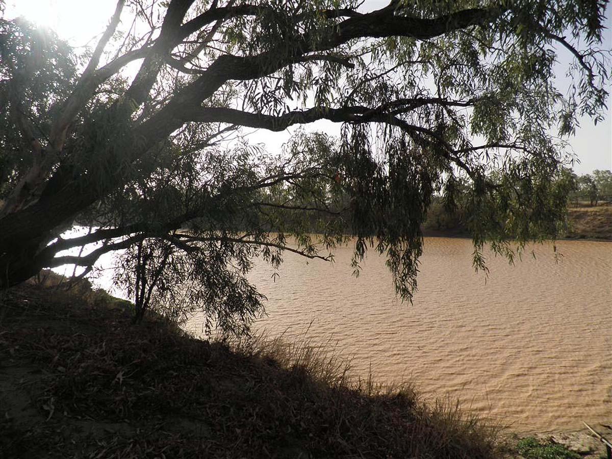 река Дайамантина, Австралия