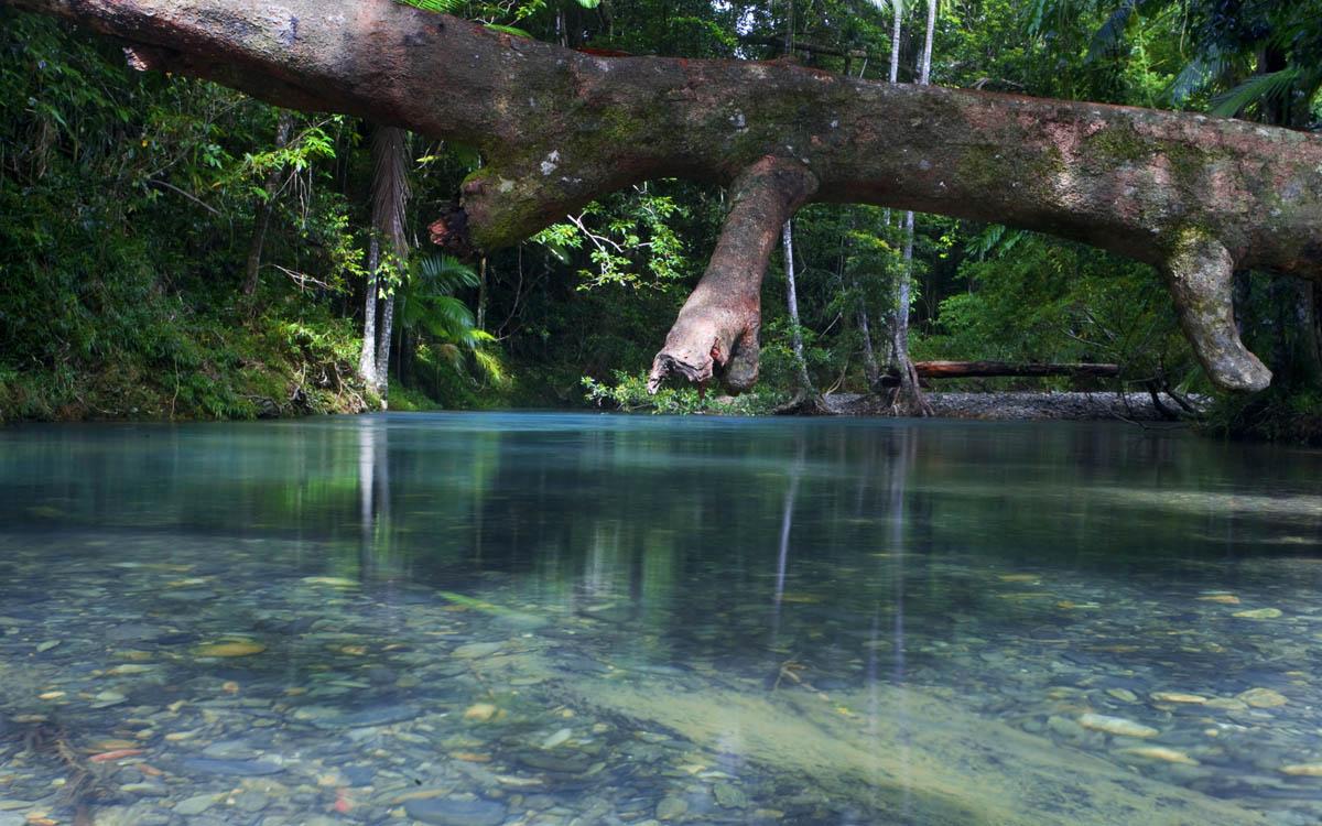 река Купер Крик в Австралии