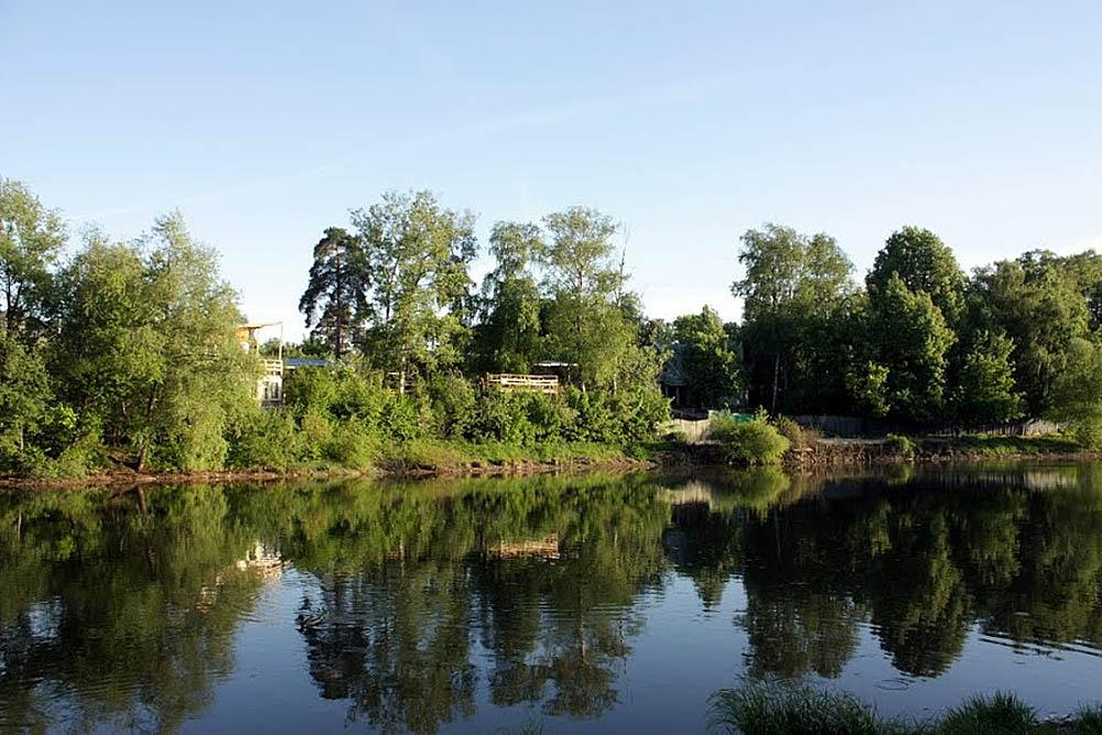 Большой Немчиновский пруд