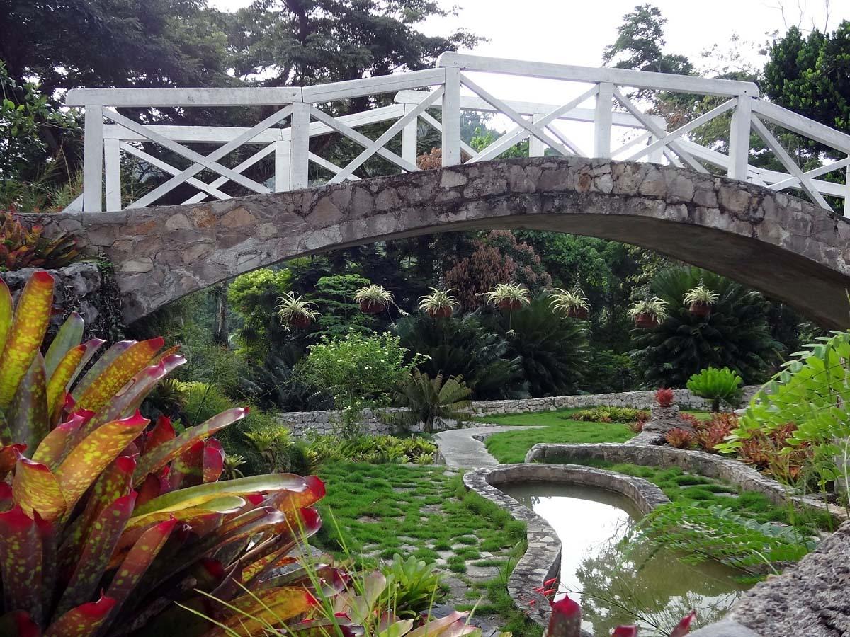 El Jardin Bot?nico Orquideario Soroa