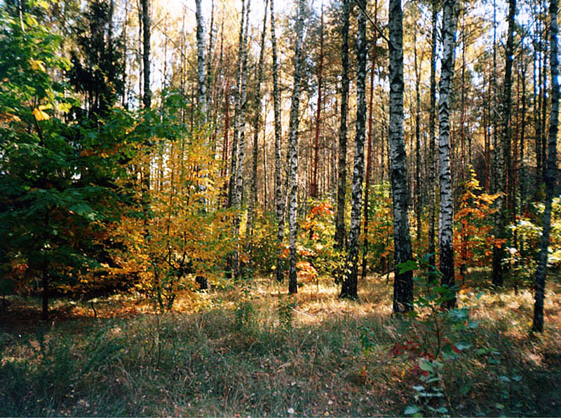 Ичнянский национальный природный парк, Украина