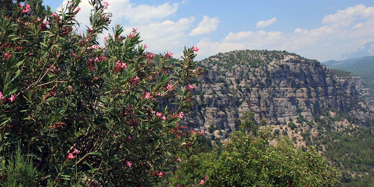 Koprulu Canyon milli parki