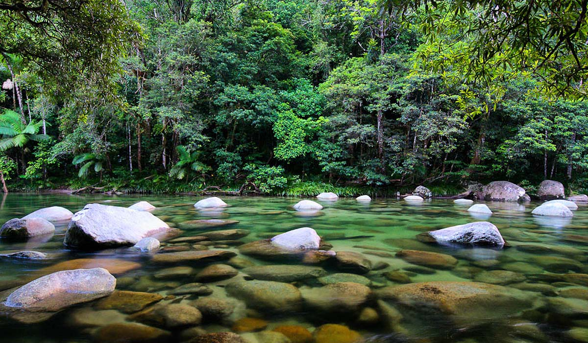 Mossman Gorge, Daintree rainforest, Australia
