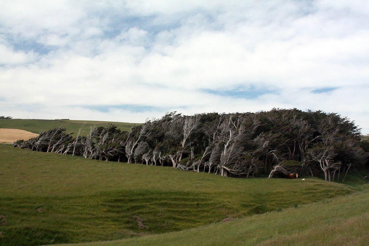 Наклонный мыс, Новая Зеландия