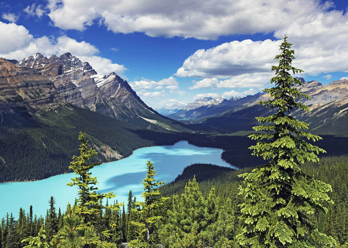 Peyto lake, mount Patterson, Banff national park, Alberta, Canada