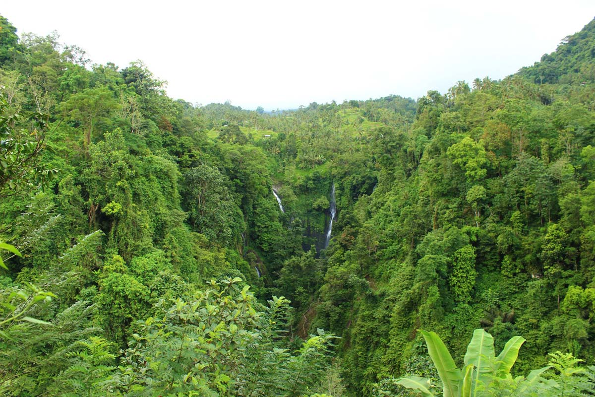 Sekumpul Waterfall, Singaraja, Bali
