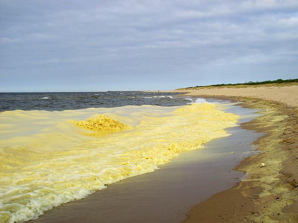 Желтое море, Азия