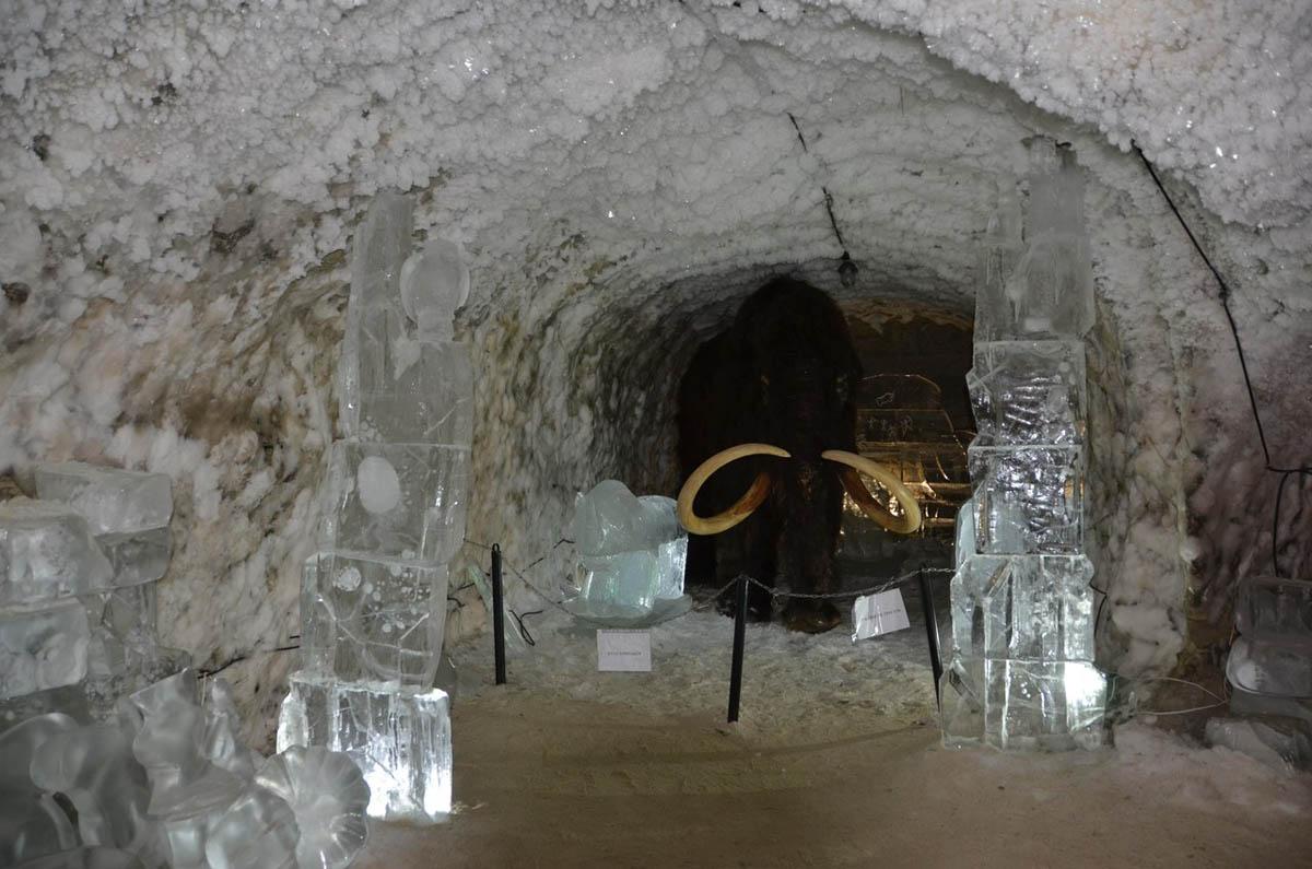 мамонт в музее вечной мерзлоты