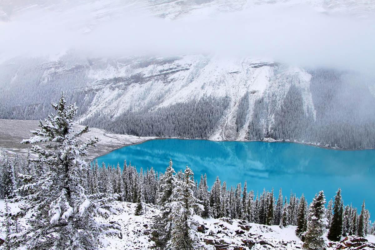 озеро Пейто в Канаде