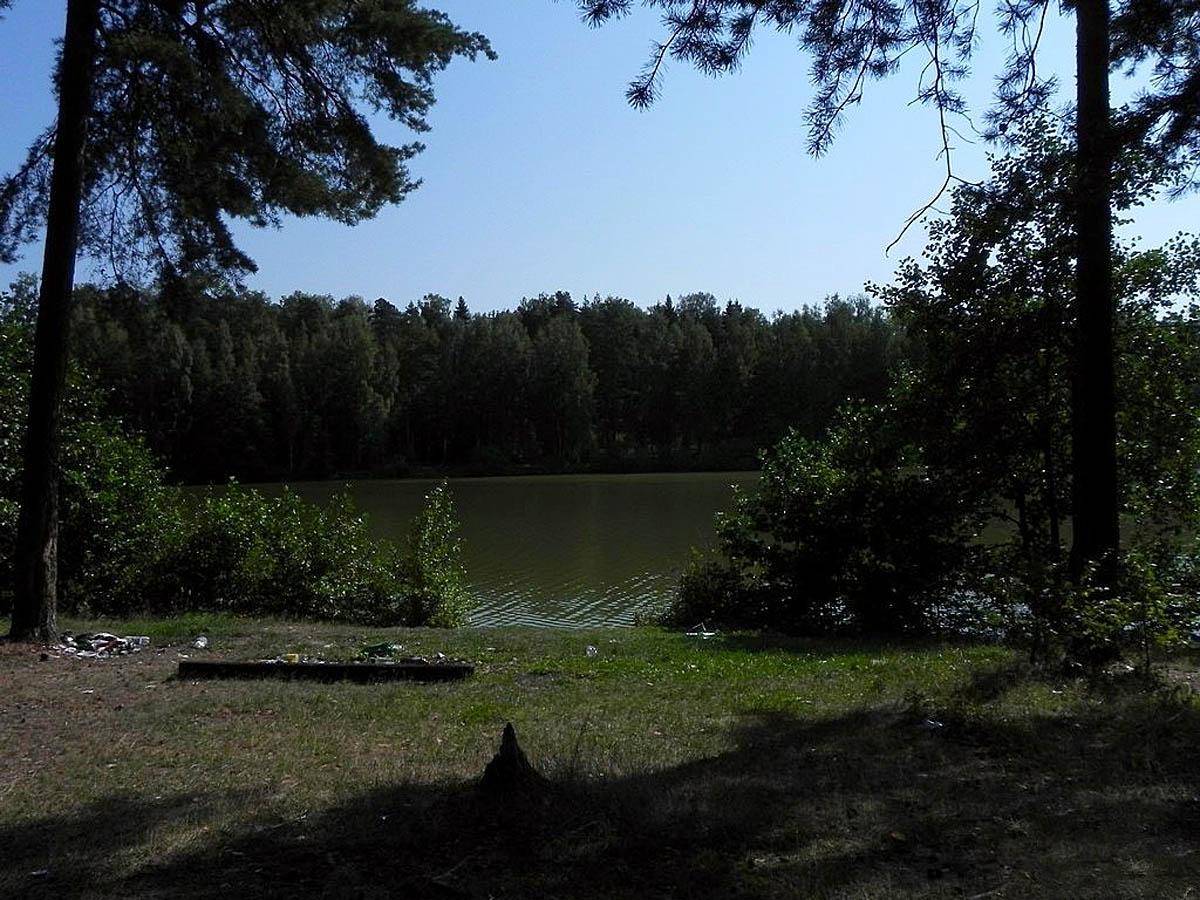 парк Харинка, Иваново, Россия