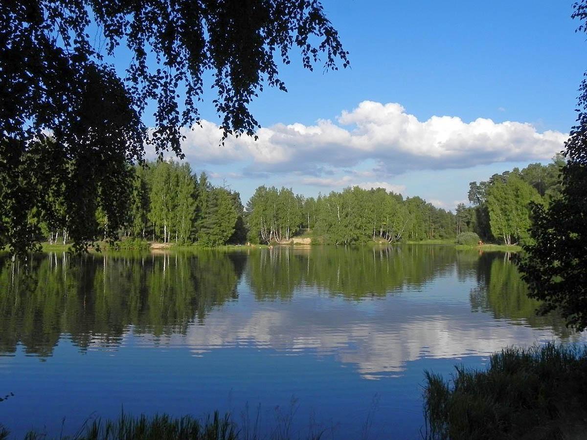 парк Харинка летом
