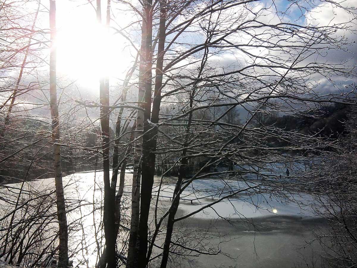 парк Харинка зимой