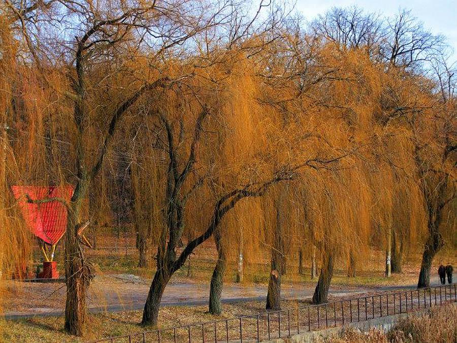 парк Кинь-Грусть, Киев, Украина