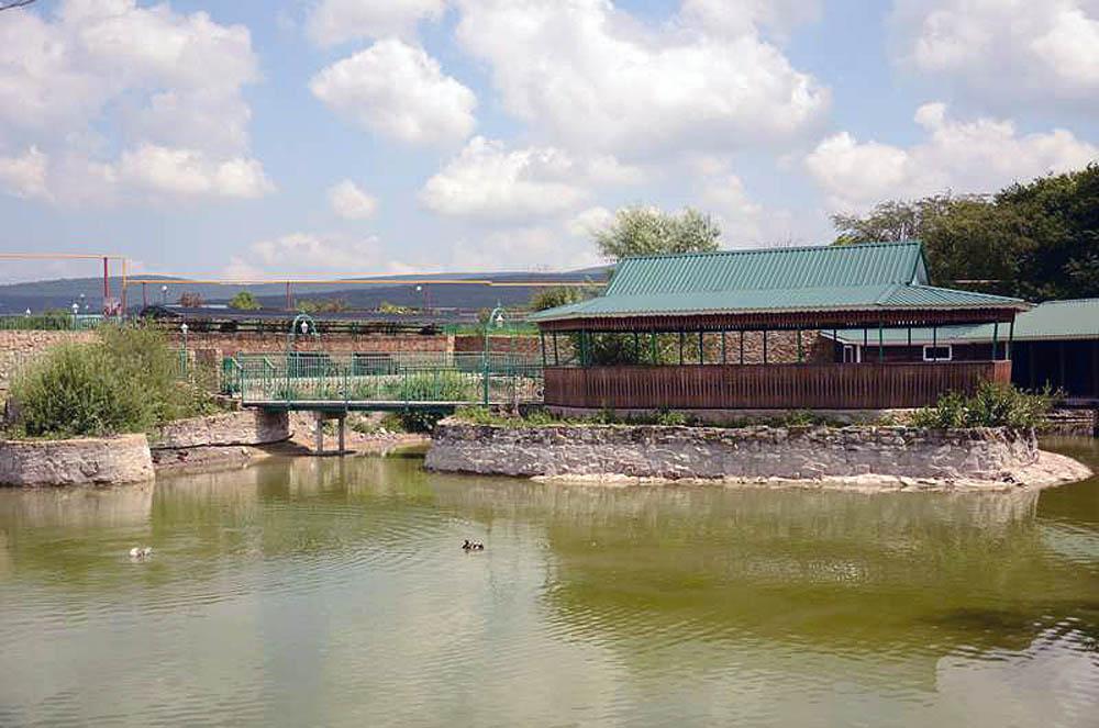 парк живой природы До-До, Анапа