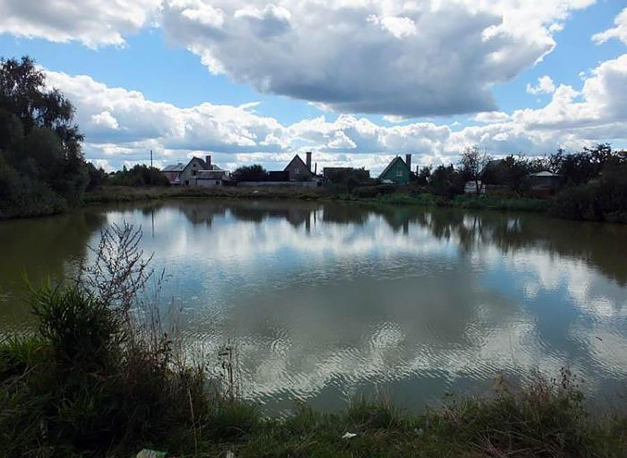 пруд в Подушкино