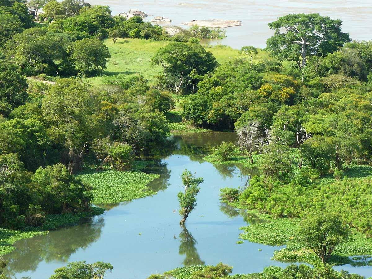 река Ориноко, Венесуэла