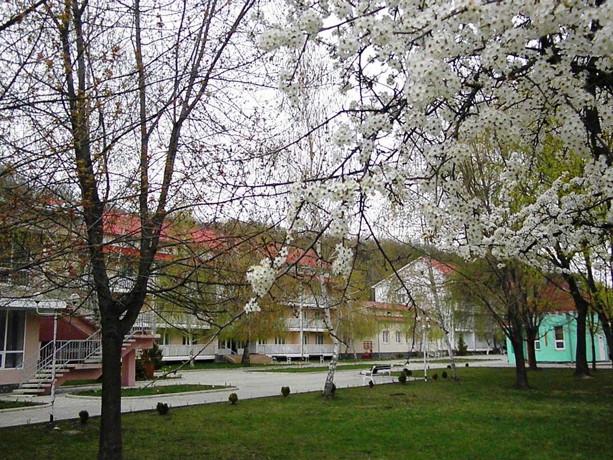 санаторий Теплица в Виноградове, Закарпатье