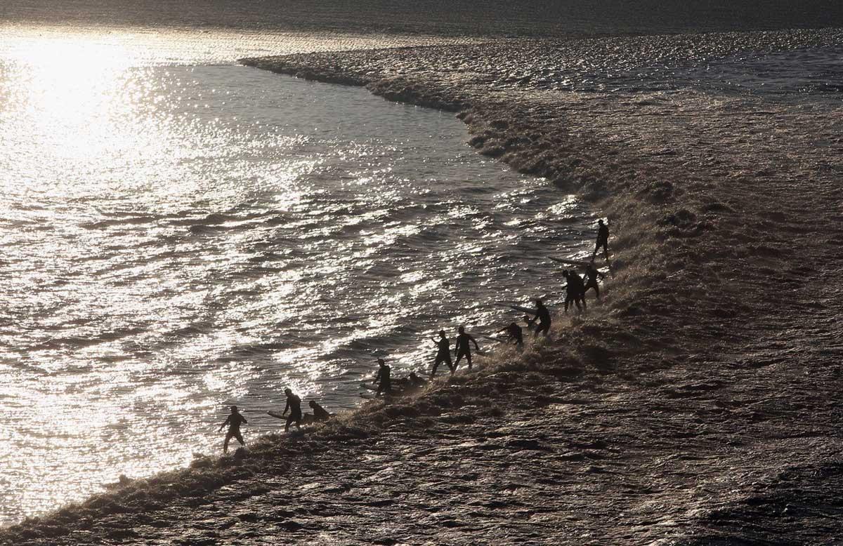 серфингисты на приливной волне