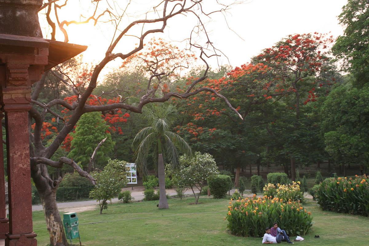 сады Лоди в Дели, Индия