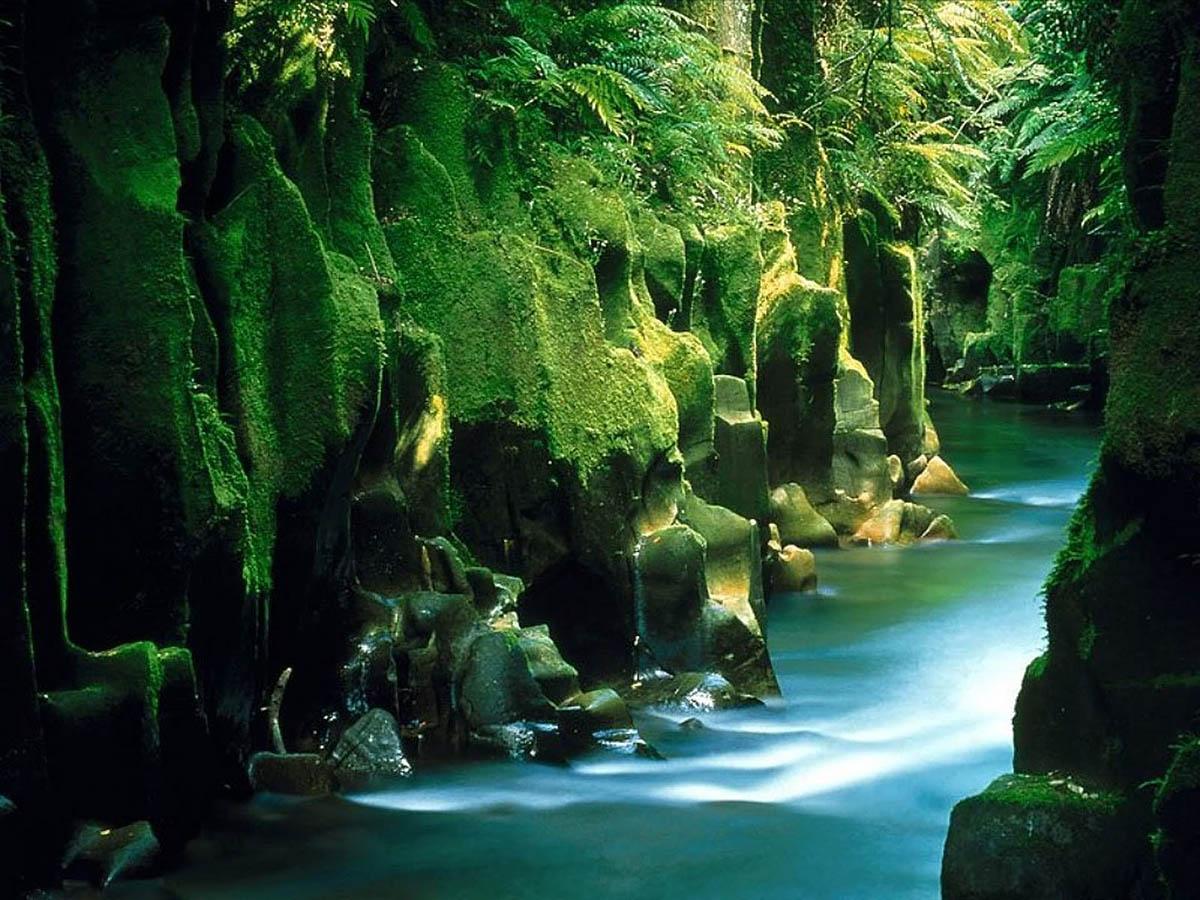 Северный остров, Новая Зеландия