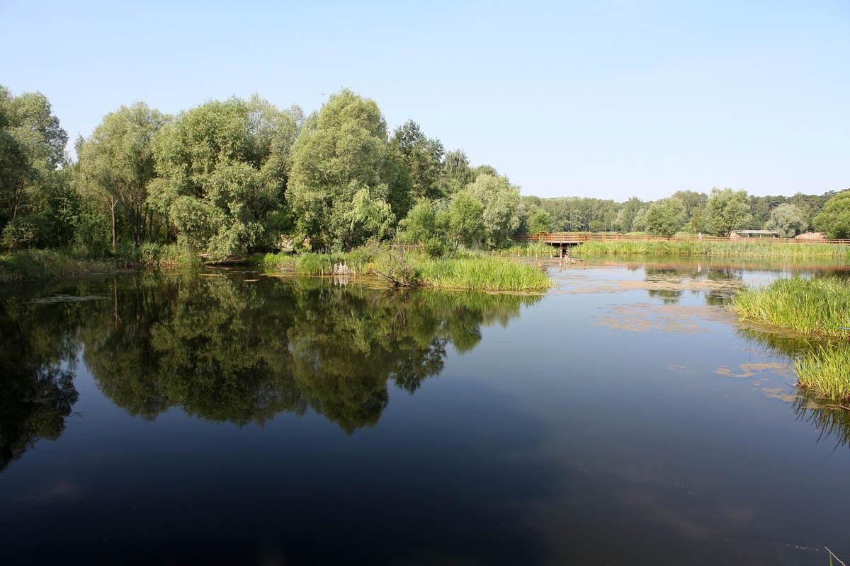 лесопарк Серебряный бор, Москва
