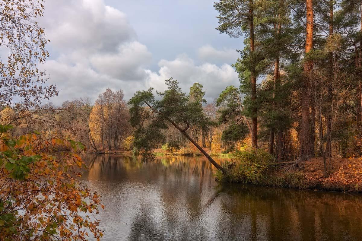 Серебряный бор осенью