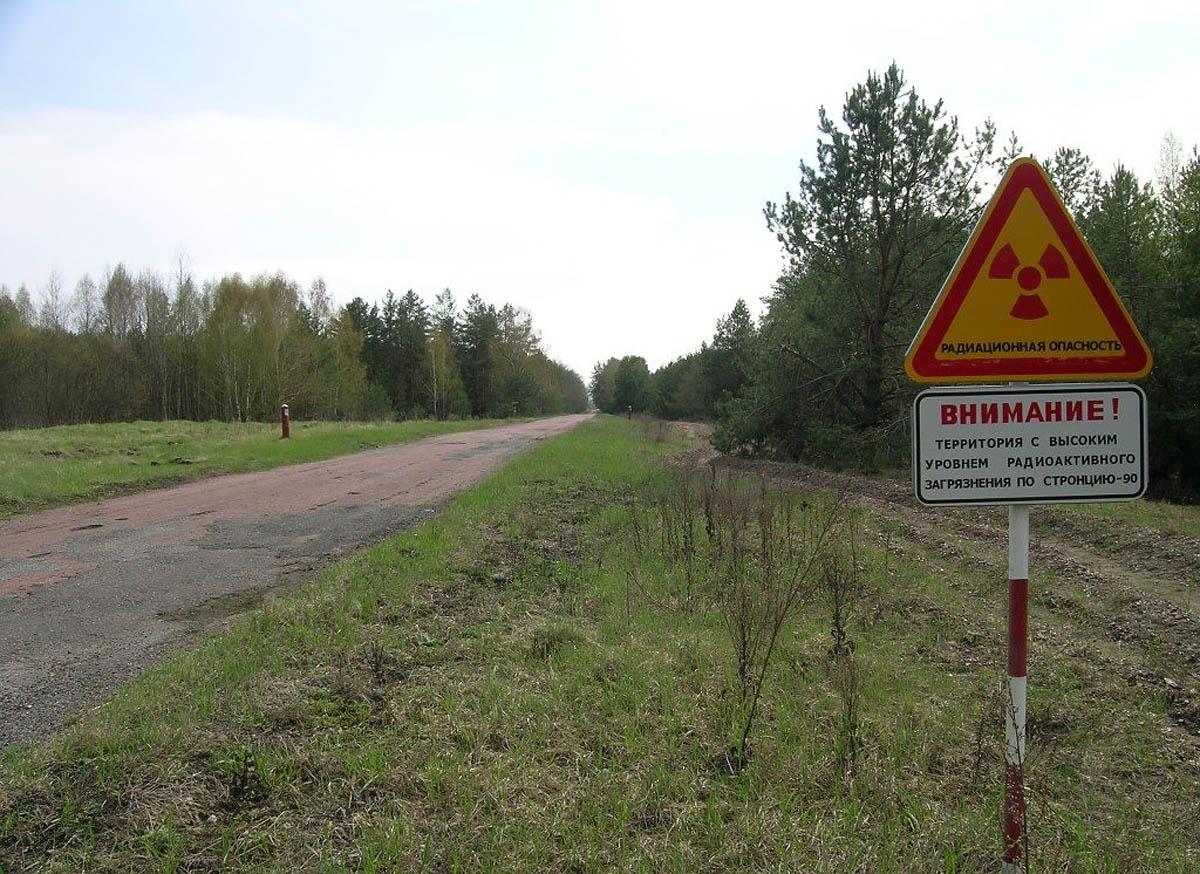 Зона отчуждения ЧАЭС станет Чернобыльским биосферным заповедником