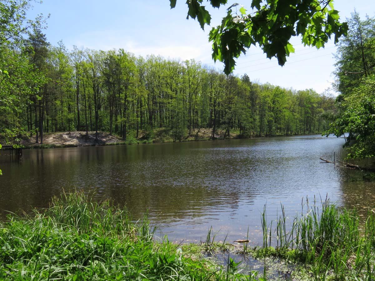 Картинки природы киевская область