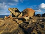 окаменелости возле озера Эйр