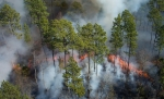 пожар на Окефеноки
