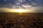 ракушечный пляж на Арабатской Стрелке