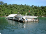 плавучая платформа в морском парке Пулау Пайар