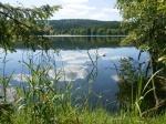 Славковский лес в Чехии